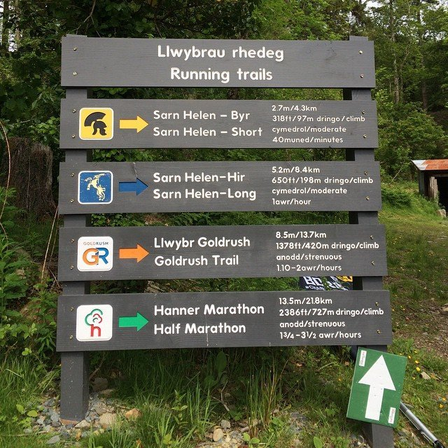 Trails in Coed y Brenin forest park, with my name on