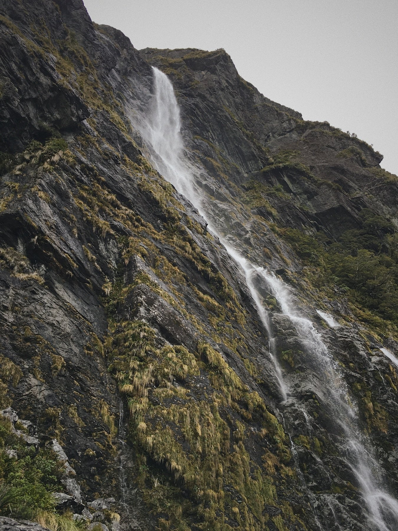 One of a few beautiful waterfalls on the Routeburn Track