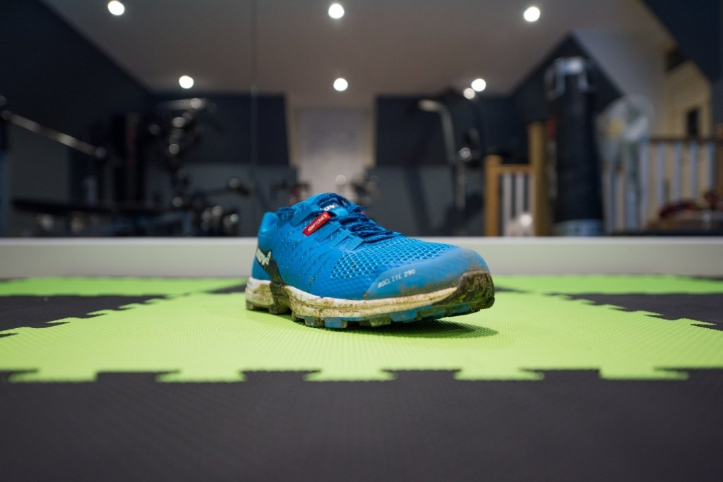Inov-8 Roclite 290 perspective view