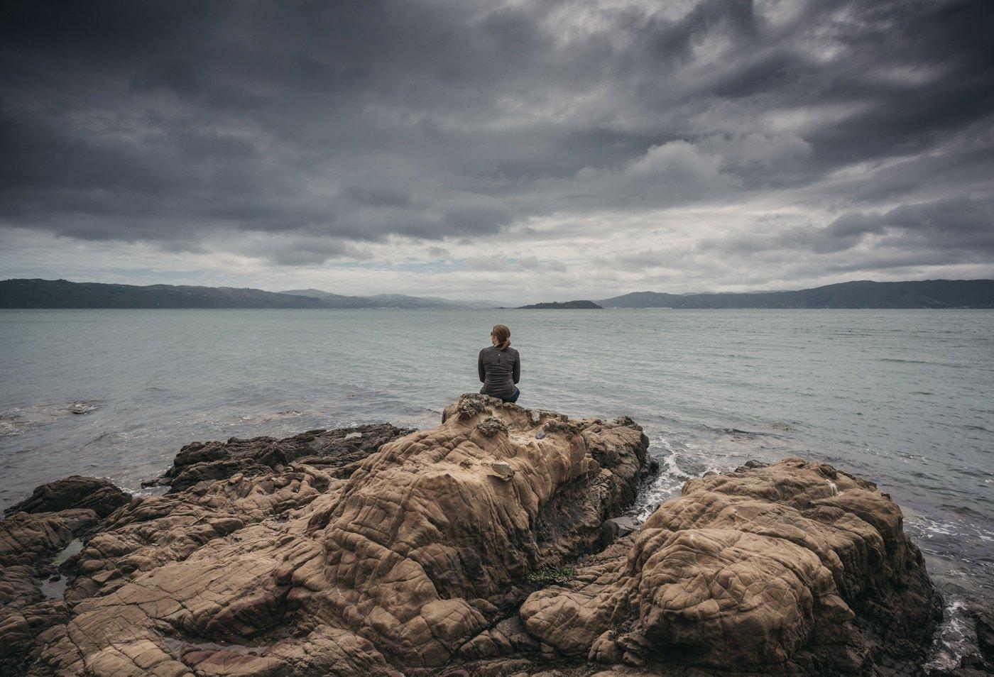 Wellington coast view