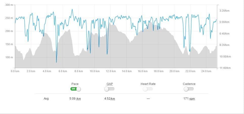 Maverick Race Surrey 25k profile