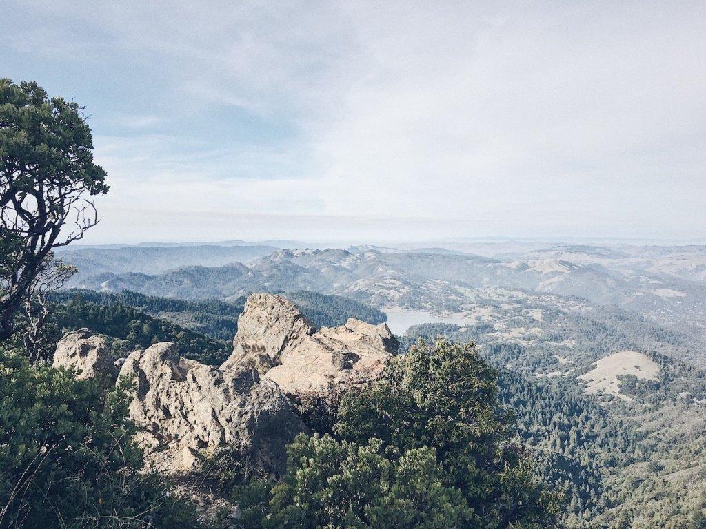 Running up Mount Tamalpais - Trail & Kale