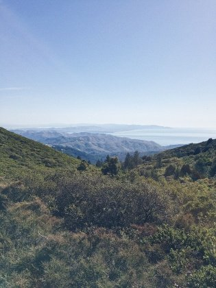 running in marin california - Trail & Kale
