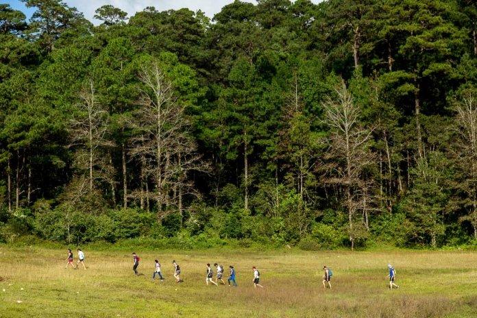 Aire Libre x Trail Kale ChiapasxAireLibre ©dklinckwort 28