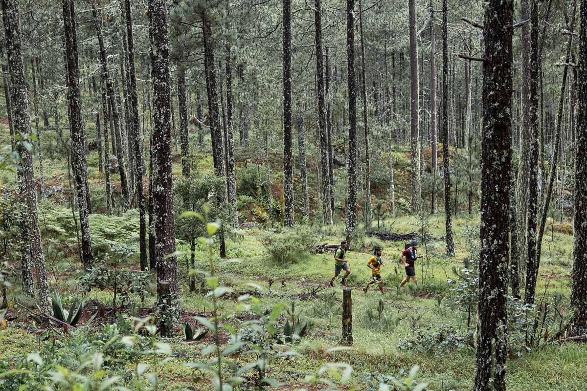 Aire Libre x Trail Kale finales aire libre 18