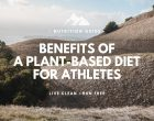 The Benefits of a Plant Based Diet For Athletes