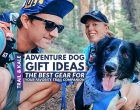 Adventure Dog Gift Ideas: Hiking And Outdoor Dog Gear