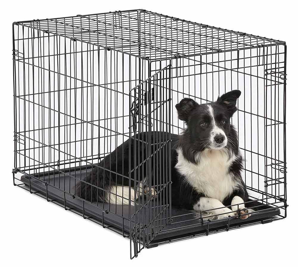 Midwest Dog Crate Adventure Pup Essentials Trail and Kale