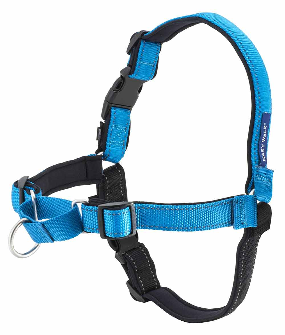 Petsafe Deluxe Easy Walk Harness Adventure Pup Essentials Trail and Kale