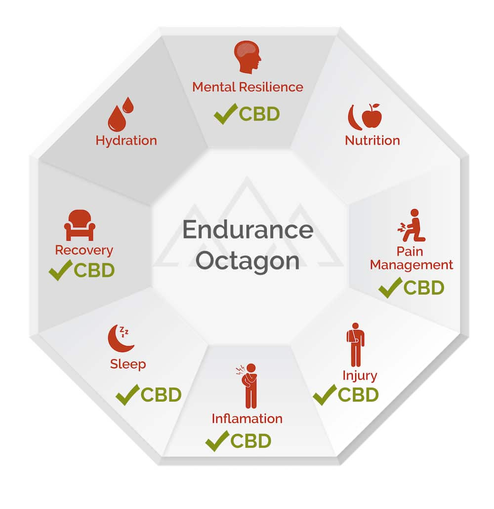 Venga CBD Endurance Octagon