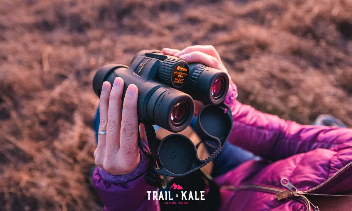 REI Optoutside Stargazing Guide Micro adventure trail and kale wm 18