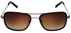 Randolph Archer Fusion Sunglasses front view