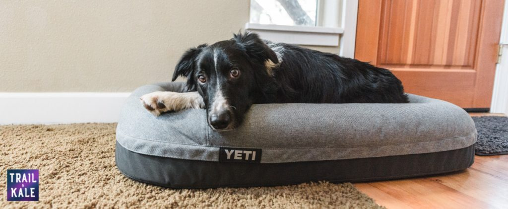YETI Dog bed review trail and kale web wm 19