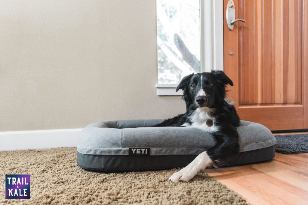 YETI Dog bed review trail and kale web wm 20