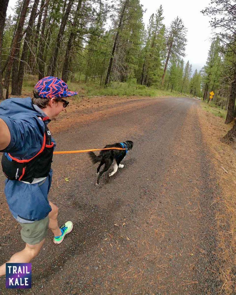 Nike Pegasus Trail 2 review - testing trail and kale web