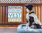 Ruffwear Cooling Vest Review: The Swamp Cooler is Designed for Hot Summer Weather