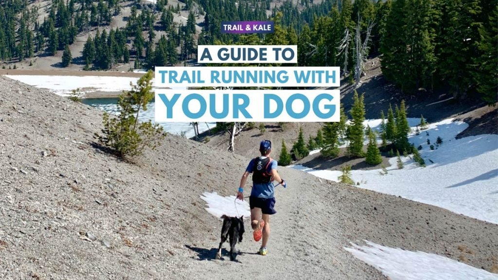 trail running with your dog trail and kale