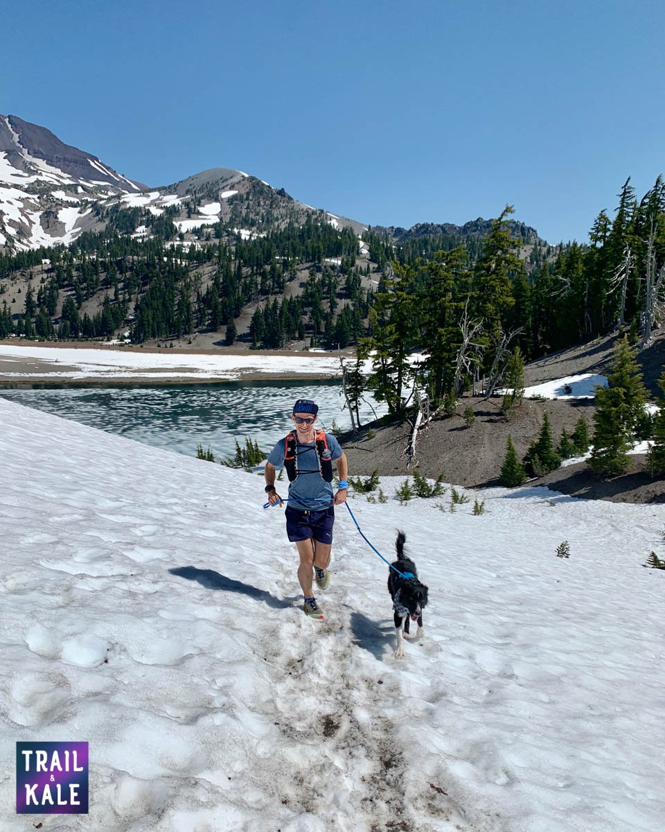 Best dog harnesses and dog leashes for running - Trail and Kale