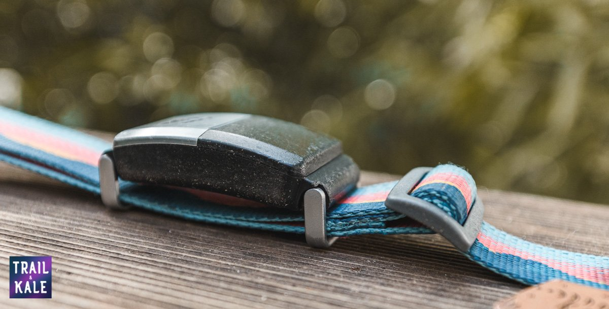 How To Use The Fi GPS Dog Collar With Other Collar Brands Like Ruffwear trail and kale web wm 2