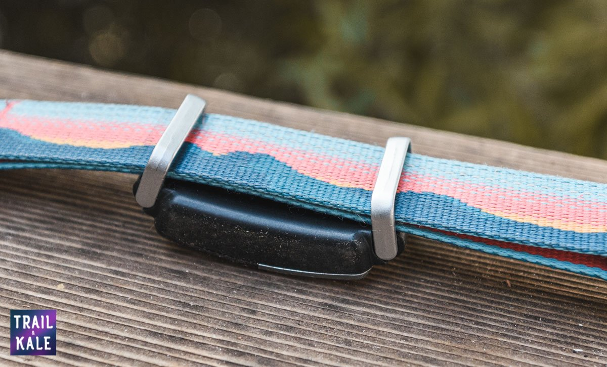 How To Use The Fi GPS Dog Collar With Other Collar Brands Like Ruffwear trail and kale web wm 3