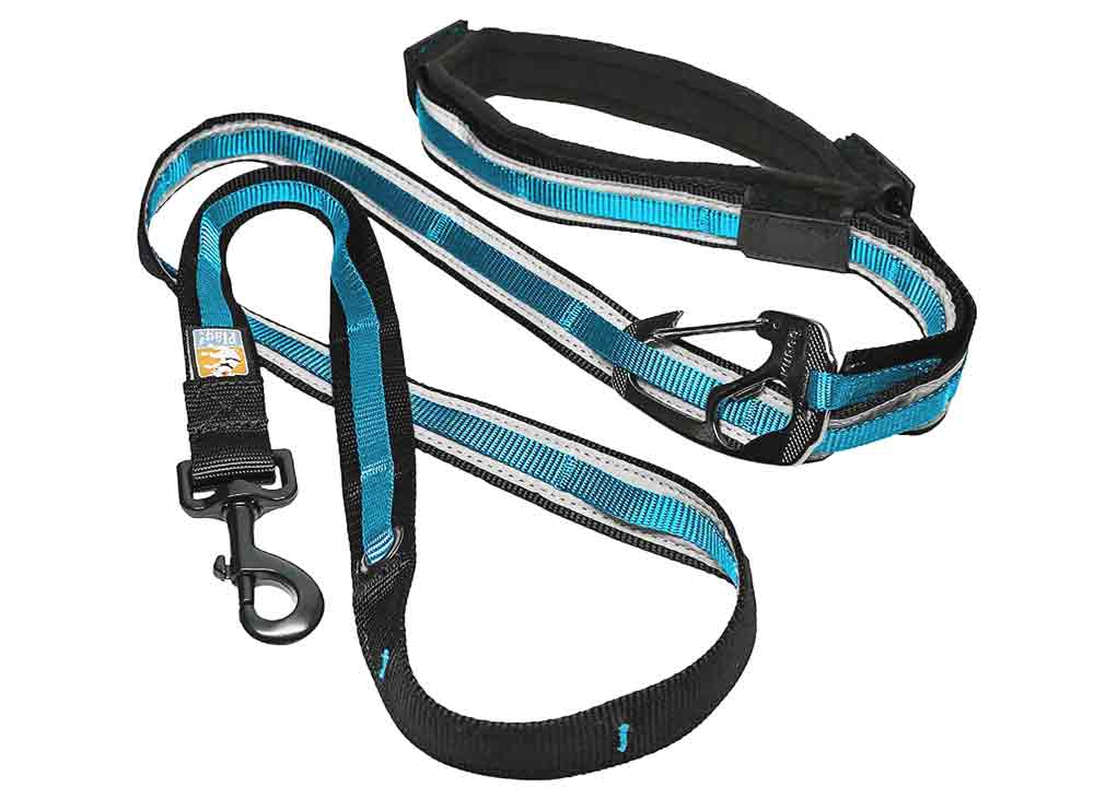 Kurgo Quantum 6 in 1 dog leash best dog leashes for running trail and kale