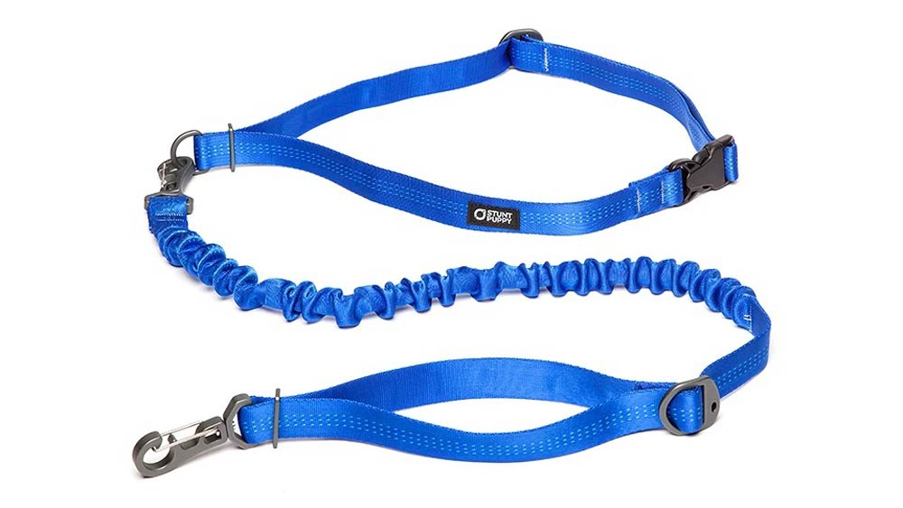 Stunt Puppy dog leash best dog leashes for running trail and kale