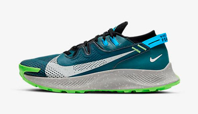 Nike Pegasus Trail 2 Mens Womens Trail and Kale
