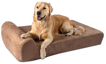 Big Barker Pillow Top Orthopedic Dog Bed for Large Dogs best dog beds trail and kale