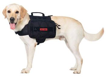 OneTigris Dog Backpack 2 best dog backpack trail and kale 1