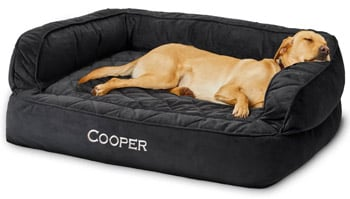 Orvis Memory Foam Couch Dog Bed best dog beds trail and kale