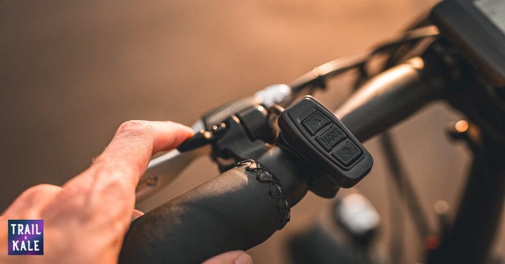 Rad Power Bikes RadMini 4 Review Trail and Kale web wm 4