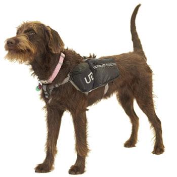 Ultimate Direction Dog Vest 2 best dog backpacks trail and kale 1