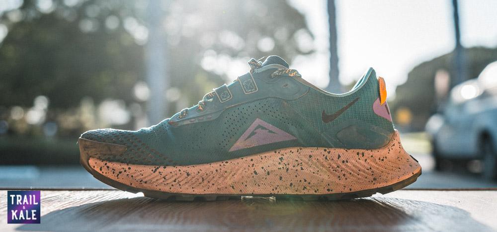 Nike Pegasus Trail 3 Review Trail and Kale web wm 5