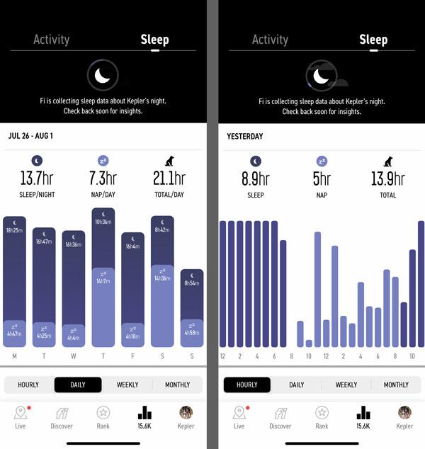 Fi GPS Dog Collar Sleep Tracker Review