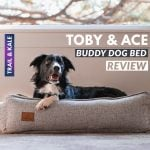 Toby and Ace Buddy Dog Bed Review Trail and Kale